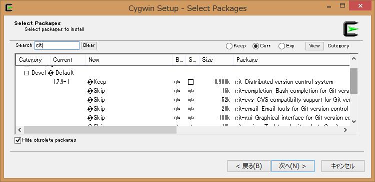 Cygwin Terminal2